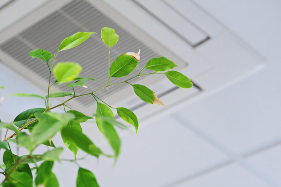 qualité de l'air dans les entreprises